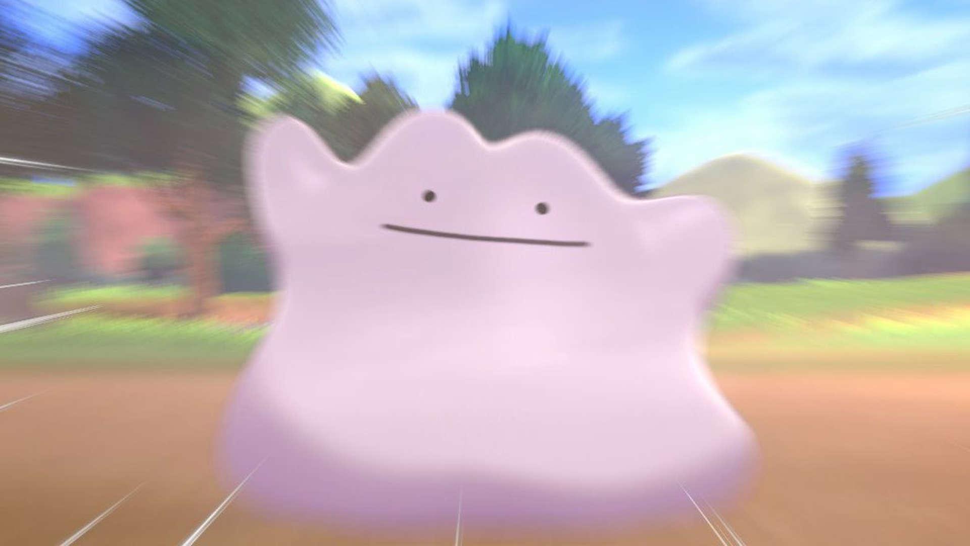 pokemon spada scudo ditto